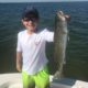 23926464 1893002687695021 1520662673772611231 o 80x80 - Clearwater Inshore Fishing Report for July